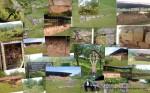 Costesti- Cetatuie - Colaj executat in google picasa