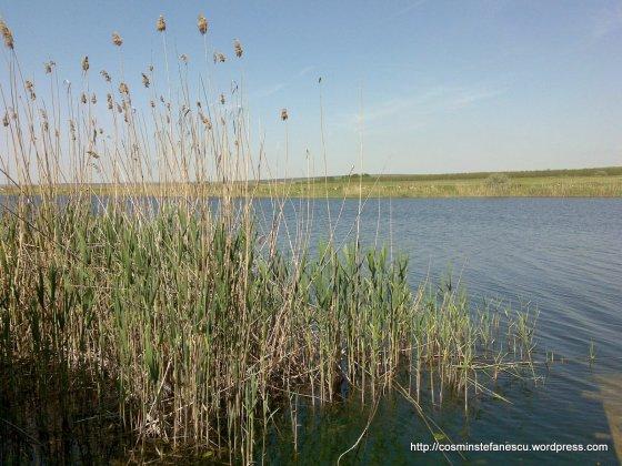 Medgidia-Canalul Dunare-Marea Neagra - Foto - Cosmin Stefanescu (5)