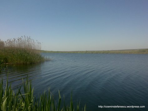 Valea Carasu - Medgidia - Foto - Cosmin Stefanescu (3)