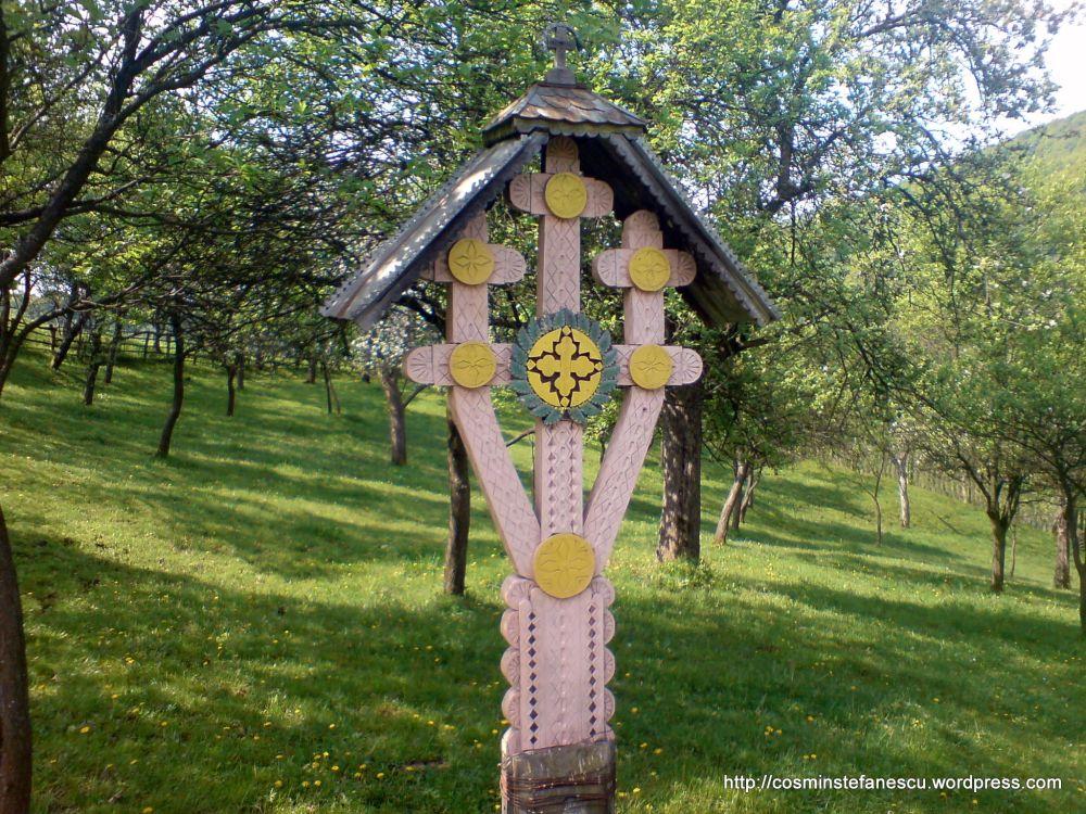 Troiță - Pe drumul către Cetatea Costesti - Foto Cosmin Ștefănescu