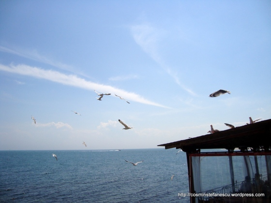 Pescarusi - Nessebar Bulgaria - Marea Neagra - Foto Cosmin Stefanescu (2)