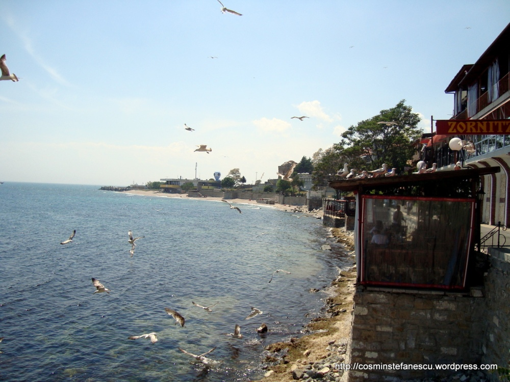 Pescarusi - Nessebar Bulgaria - Marea Neagra - Foto Cosmin Stefanescu (3)