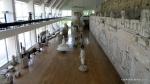 Adamclisi - Judetul Constanta - Romania - Muzeul Tropaeum Traiani - Vedere de ansamblu a exponatelor din muzeu - Foto Cosmin Stefanescu (22)