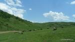 Peisaje din zona Vulcanii noroiosi - Berca, Buzau - Foto Cosmin Stefanescu (9)