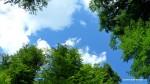 Sarmisegetusa Regia, locul care parca atinge cu crengile cerul -  Orastioara de sus, Muntii Sureanu, Hunedoara, Romania - Fotografii relizate de Henry Cosmin Florentin Stefanescu (14)