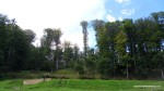 Sarmisegetusa Regia, locul care parca atinge cu crengile cerul -  Orastioara de sus, Muntii Sureanu, Hunedoara, Romania - Fotografii relizate de Henry Cosmin Florentin Stefanescu (3)