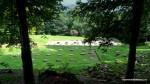 Templul de calcar  - Sarmisegetusa Regia,  Orastioara de sus, Muntii Sureanu, Hunedoara, Romania - Fotografii relizate de Henry Cosmin Florentin Stefanescu (10)