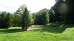 Templul de calcar  - Sarmisegetusa Regia,  Orastioara de sus, Muntii Sureanu, Hunedoara, Romania - Fotografii relizate de Henry Cosmin Florentin Stefanescu (14)