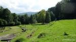 Zona sacra  - Sarmisegetusa Regia,  Orastioara de sus, Muntii Sureanu, Hunedoara, Romania - Fotografii relizate de Henry Cosmin Florentin Stefanescu  (4)