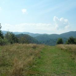 Costesti - Cetatuie -Cetatea dacica - Foto Cosmin Stefanescu (123)