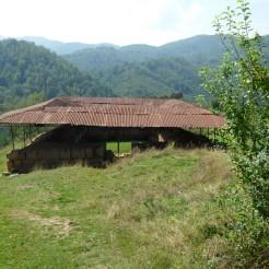 Costesti - Cetatuie -Cetatea dacica - Foto Cosmin Stefanescu (126)